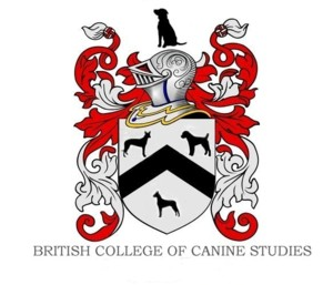 BCCS Logo 300 x 257
